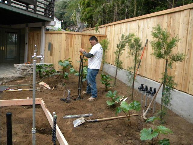 Landscaping work 7