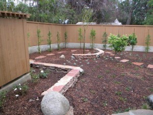 Landscaping work 11