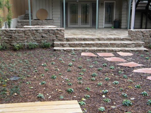 Landscaping work 35