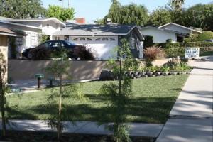 Landscaping work 61