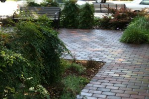 Landscaping work 83