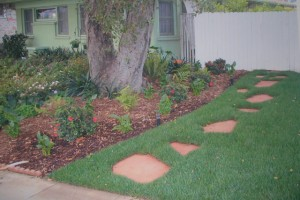 Landscaping work 105