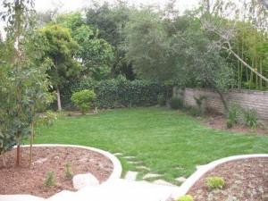 Landscaping work 147