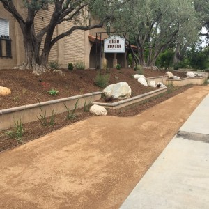 Landscaping work 157