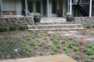 Landscaping work 47