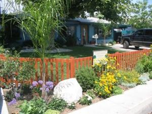 PLanting_landscaping_plants